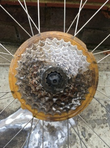 Picture of bicycle cassette cleaning process